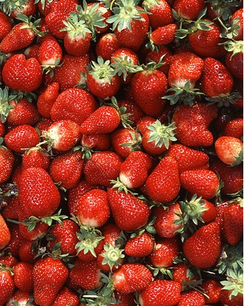 Strawberries - a British picnic essential!